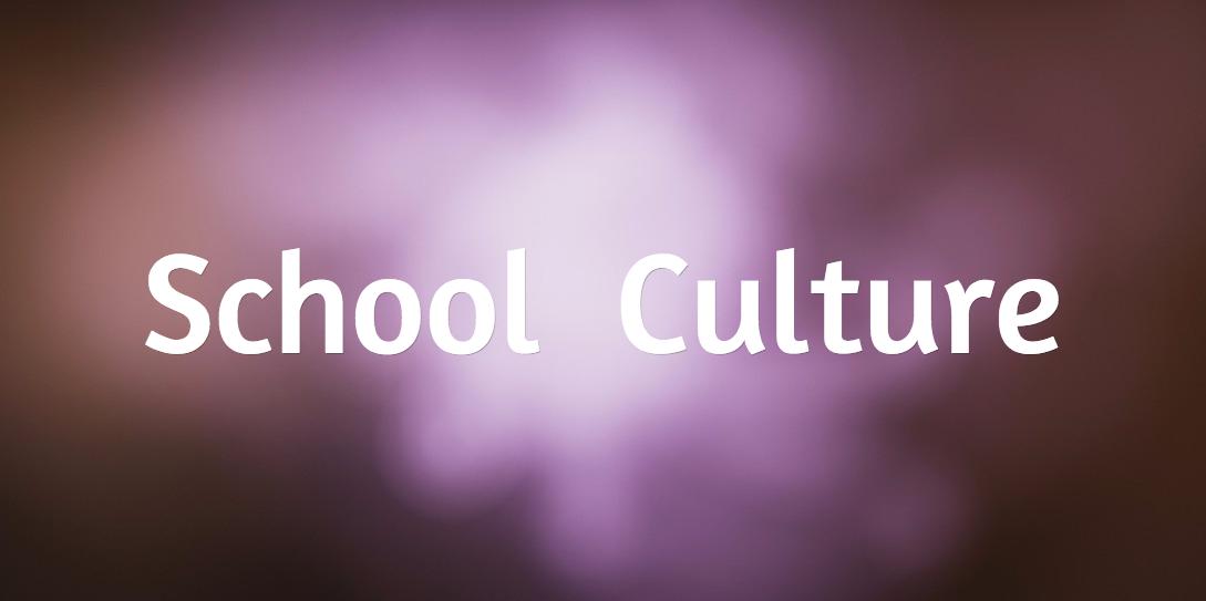 SchoolCulture2