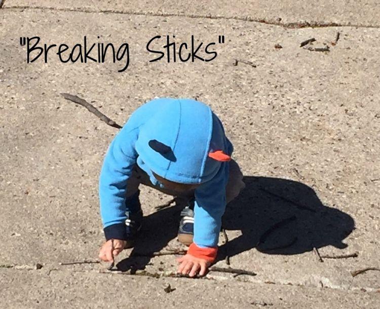 BreakingSticks1.jpg